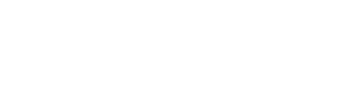 Bona Fide Virtual Services Logo